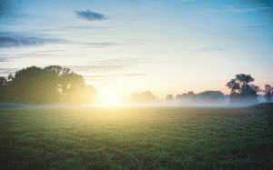 Morning Sunshine on Fog wallpaper