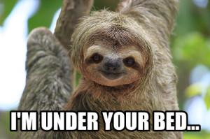 funny happy birthday sloth meme