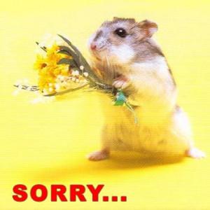 sorry.jpg#sorry%20350x350