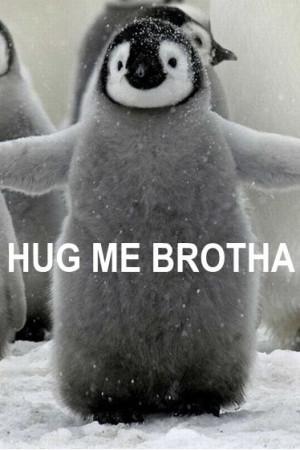 HUG ME BROTHA!