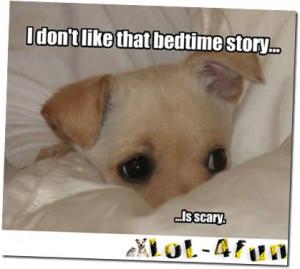 http://lol-4fun.blogspot.com/ Funny dogs VS Funny cats
