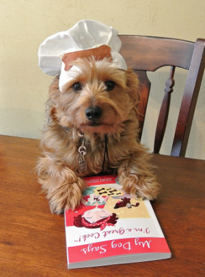 ... very fun and eye-catching. It belongs in every dog lover's kitchen
