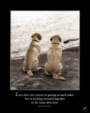 LOVE LOVE LOVE- SWAC BLOG