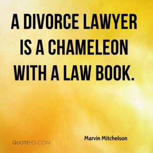 ... -mitchelson-lawyer-a-divorce-lawyer-is-a-chameleon-with-a-law.jpg