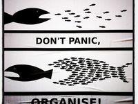 ... Organization Humor and Genius | Organized Living Quotes Organize