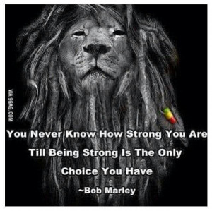 The lion wo quote on rasta colors