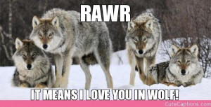 Rawr Means Love You Wolf