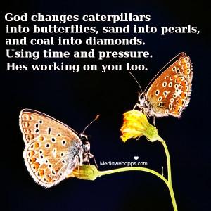 Caterpillars Change Into Butterflies