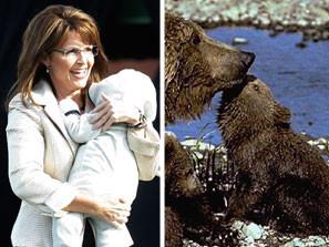 Don't Mess With This Alaskan Mama Bear