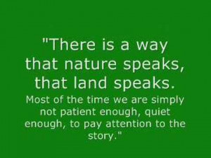 There Is A Way That Nature Speaks That Land Speaks Nature Quote