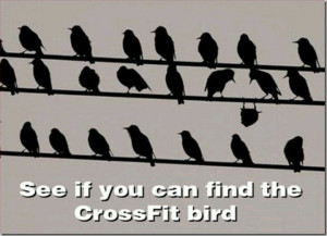 CrossFit bird. Thought you would find this funny. - @Lori Asher