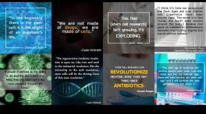 ... stem cells regenerative medicine stem cell banking stem cells