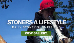 Stoner Quotes About Life
