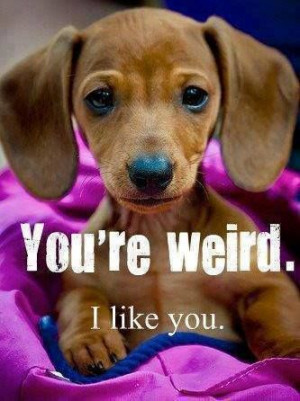 Oh that's totally me! I tell my friends they're weird all the time and ...