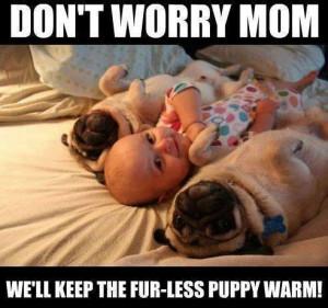 Baby And Pug..