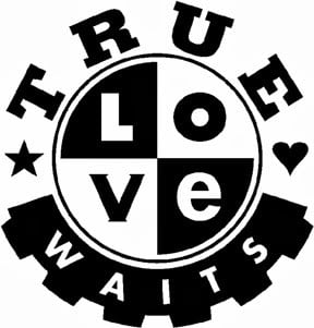 True Love Waits - Is It Biblical?