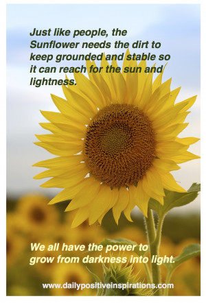 ... Sunflowers Quotes, Sunflowers And Quotes, Sunflowers Lights, Quotes 3