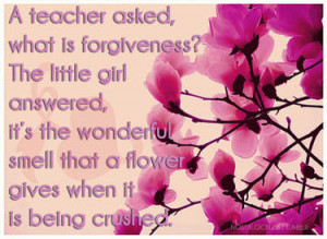 Forgiveness quote, with pretty pink flowers.