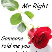 quotes, about, love, quote, Mr-Right, funny