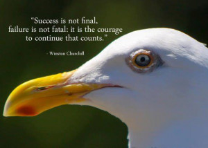 Motivational Quote on failure is not fatal