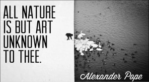 All Nature Is But Art Unknown To Thee Alexander Pope