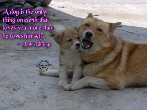 Animal Quotes Graphics, Pictures - Page 2