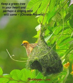 ... in your heart and perhaps a singing bird will come challenge quote