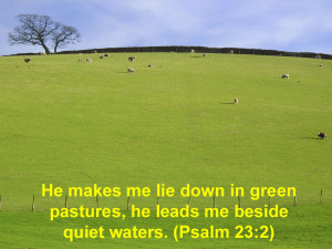 ... Down In Green Pastures, He Leads Me Beside Quiet Waters. ~ Bible Quote