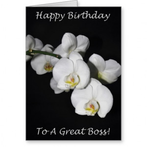 happy_birthday_boss_white_orchid_greeting_cards ...