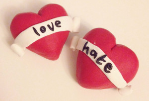 Love Hate Relationship Quotes Love hate brooches on white
