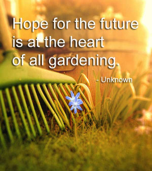 Hope For The Future… Quote