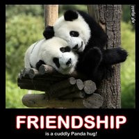 panda quotes photo: Friendship friendship_panda.jpg