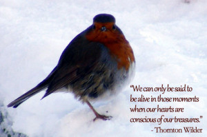We can only be said to be alive in those moments when our hearts are ...