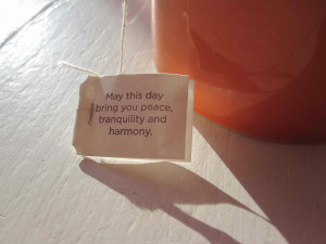 This tea bag quote is the inspiration to blog this morning.