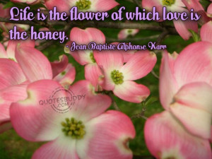 Beautiful Flower Quotes About Life: Love Is Honey So Be Positive With ...