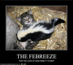 Random Funny Internet Pictures