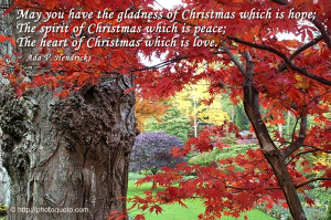 Famous Christmas Quotes And...