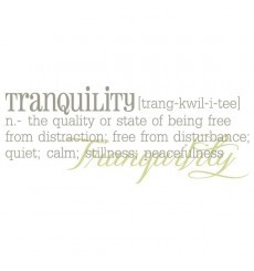 Tranquility Definition