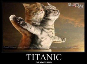 funny animal wallpapers with quotes