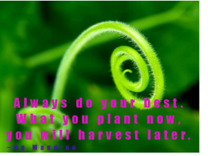 ... up to give you the life sustaining environment you need to succeed