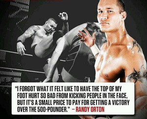 WWE Wrestling Quotes