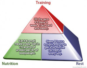 Training Nutrition Rest - The Bodybuilding Pyramid of Success