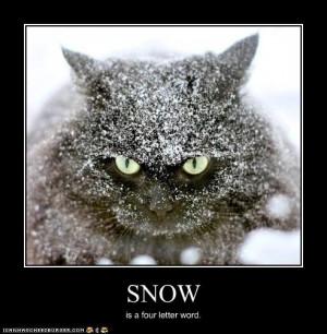 ASK A QUESTION Snow Day - Día de Nieve