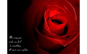 Love Rose With Quotes (click to view)