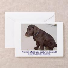 Wet Lab Puppy Greeting Cards (Pk of 10) for
