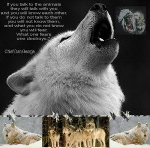 Native American Indians And Wolves Pictures