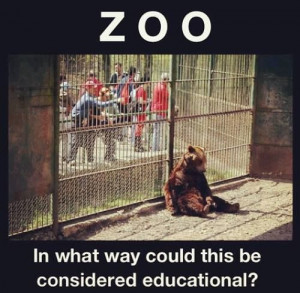 zoos for against But most zoos are small insignificant collections in towns or situated by roadsides or in people's private backyards  arguments against zoos 1.