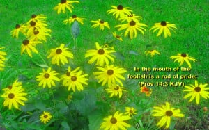 In The Mouth Of The Foolish Is A Rod Of Pride. ~ Bible Quote