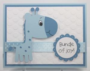 Congratulations Baby Boy Card Sayings