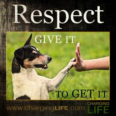 respect i wish grown children knew how much the lack of respect hurts